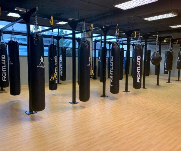 clases de boxeo en las rozas, madrid