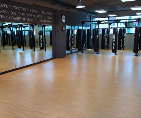 entrenamiento de boxeo en las rozas