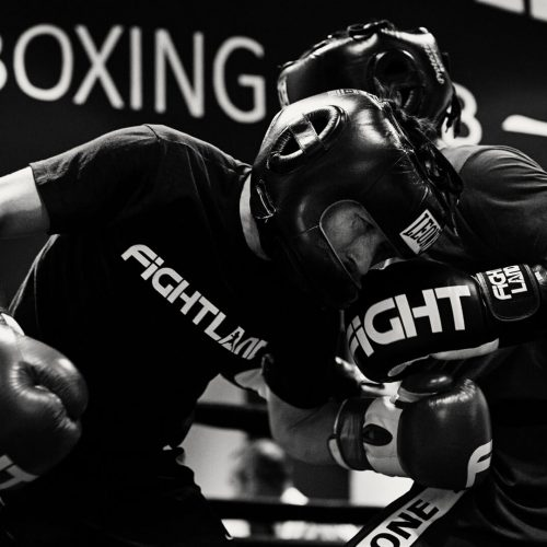 Fightland - Club Boxeo - White Collar Club